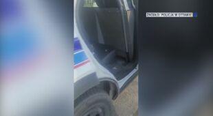 Policjanci pomogli gęsiej rodzinie